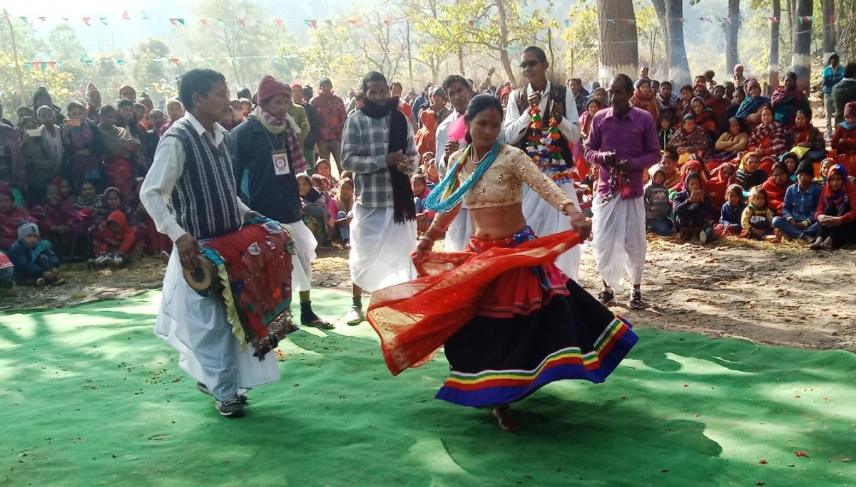 कञ्चनपुरको शुक्लाफाँटा नगरपालिका ९ को थारु समुदायको आस्थाको केन्द्र भम्कामा आयोजना गरिएको माघी मिलन कार्यक्रममा झुम्रा नृत्य देखाउदै थारु समुदायका महिला पुरुष।