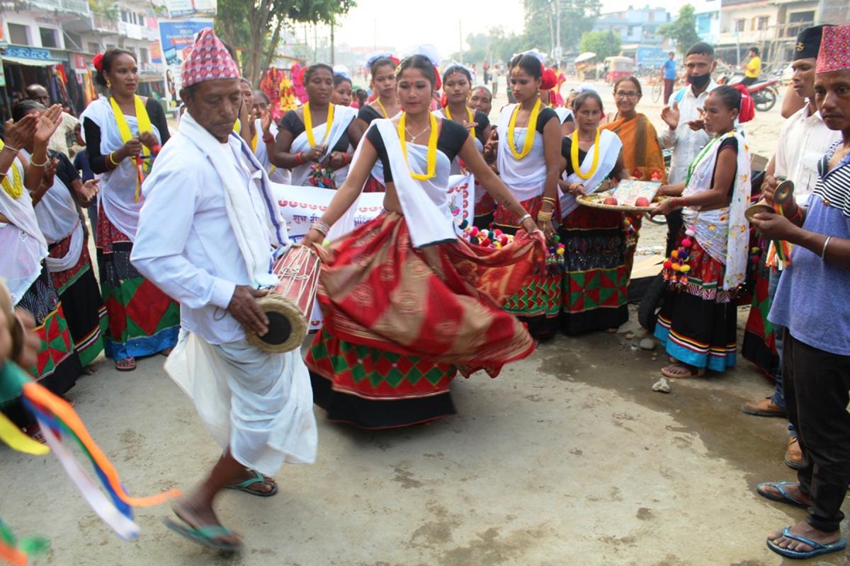 थारु समुदायका युवा युवती देउसी भैली कार्यक्रमका अवसरमा झुम्रा नृत्य देखाउदै।