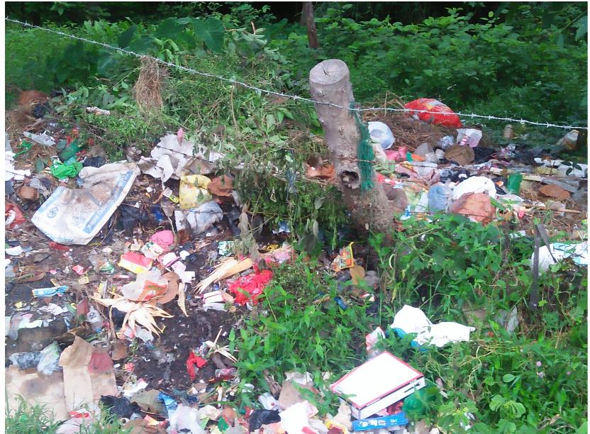 धनगढी उप–महानगरपालिका वडा नम्बर ४ को शिवपुरी सामुदायिक वन परिसरमा फोहोर फाल्ने गरिएको छ। सामुदायिक वनको विभिन्न स्थानमा फोहोरको थुप्रो नै बनाईएको छ।