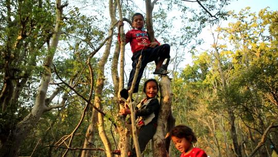 कैलालीको पहिरो पीडित बालकालिकाको जंगल पढाइ (फोटो फिचर)