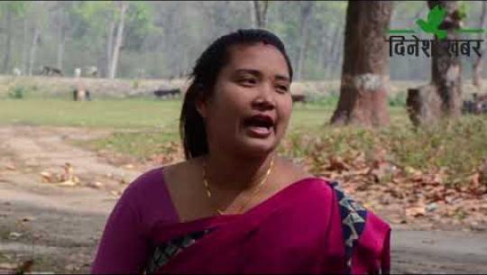 Embedded thumbnail for Sajha Manch।। साझा मञ्च।। एपिसोड ३ः कैलालीमा न्यायिक समितिका कामहरु कत्तिको प्रभावकारी छन ?